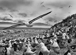 Émeute : action collective d'éclatement des rapports de domination par la réappropriation violente de son espacesymbolique